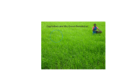 Capitalism and the Green Revolution