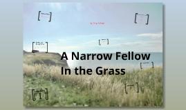 A Narrow Fellow in the Grass (Correct!)