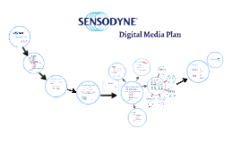 Copy of Ppt2: Digital Media Plan-Sara Sherif