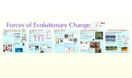 Copy of AP Bio- Evolution 4:  Evolutionary Forces