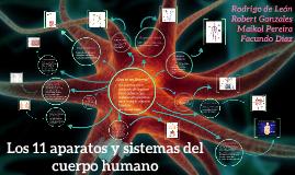 Copy of Los 11 aparatos y sistemas del cuerpo humano