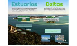 Deltas y Estuarios