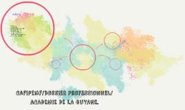 Cafipemf/DOSSIER PROFESSIONNEL/aCADEMIE DE LA GUYANE.