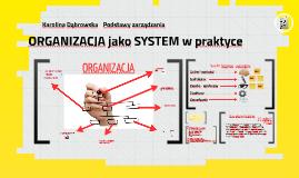 PZ_02_Organizacja jako system