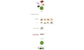 FRUTIER - joyas de fruta