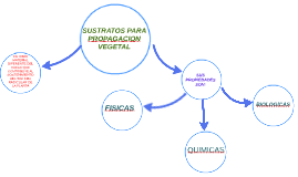 sustratos para la propagacion vegetal