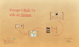 Voyage à Mali: La ville de Djénné