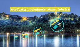 Vacationing in a freshwater biome : Lake Erie
