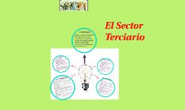 El Sector Terceario