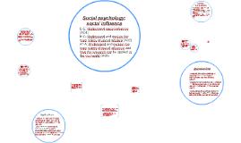 Social psychology: social influence