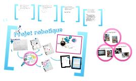 Projet robotique collège-lycée