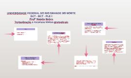 Textualização e recursos léxico-gramaticais