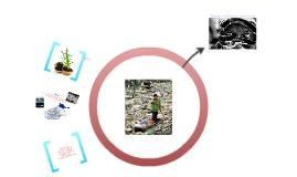 Mejoramiento de manejo de basuras en las obras