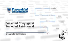 Sociedad Conyugal & Sociedad Patrimonial