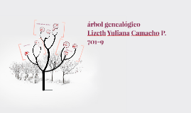 Lizeth Yuliana Camacho Pirachicán