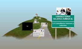 Copy of 3.4 Consultores internos y externos