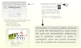 Modelamiento de Nicho de Icterus icterus