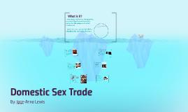 Domestic Sex Trade