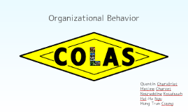Organizational Behavior: COLAS