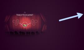 TOCO TOUCANS!!