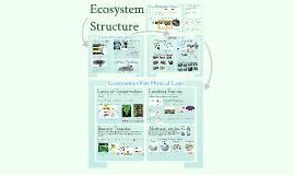 AP Bio- Ecology 9.4: Ecosystem Structure