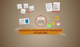 Copy of Manual APA