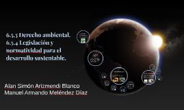 6.5.3 Derecho ambiental.