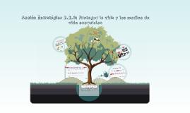 Acción Estratégica Proteger la vida y los medios de vida esenciales - Evitar y Reducir el Riesgo - Enfoque Territorial