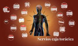 Nervios caja torácica