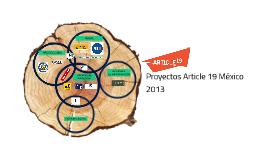 proyectos article 19 méxico