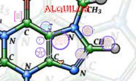 ALQUILOS