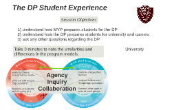 The DP Student Experience
