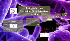 transaminacion upgch