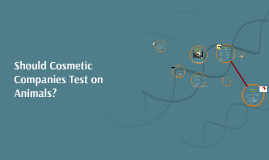 Should Cosmetic Companies Test on Animals?