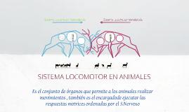 Copy of Sistema Locomotor en Animales