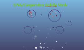 ONG/Cooperativa Baleila Verde