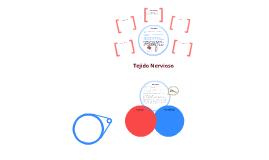Sistema Nervioso 1 -Histologia
