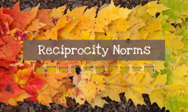 Reciprocity Norms