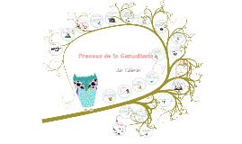 Copy of Copy of Proceso de la Consultoria