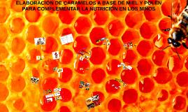 Copy of CARAMELOS DE MIEL Y POLEN