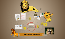The African Biome