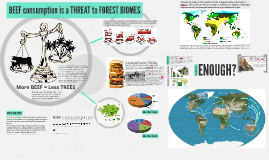 Beef consumption is a threat to forest biomes