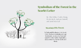 Symbolism of the Forest in the Scarlet Letter