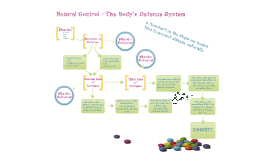 The Body's Defence System