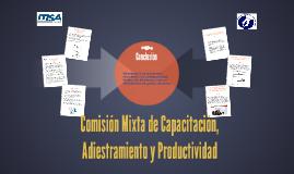 Copy of Comisión Mixta de Capacitación, Adiestramiento y Productivid