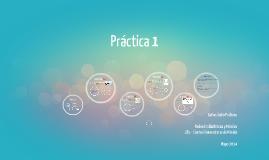 Prácticas RIM - Parte 1