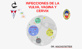 INFECCIONES DE LA VULVA VAGINA Y CERVIX