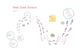 Final Exam Review part 3