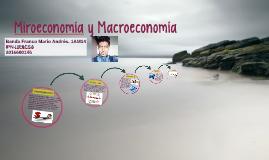 Miroeconomía y Macroeconomía
