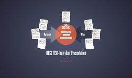 ORGS 1136-Individual Presentation